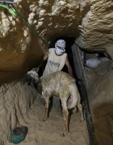 Les tunnels, source de renouveau économique pour la Bande de Gaza