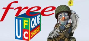 pigeon-combat-ufc-free